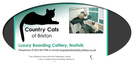 Country Cats of Briston